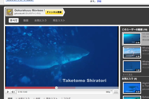 youtube_greatwhiteshark.png